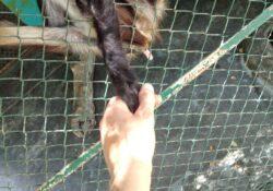 Mathilda-holds-hand